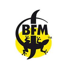 bfm-logo